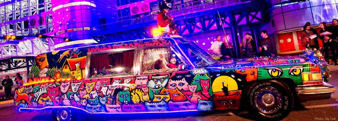 Art Cars of Houston